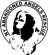 abandoned angels logo
