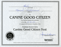 Canine Good Citizen test October 21, 2009